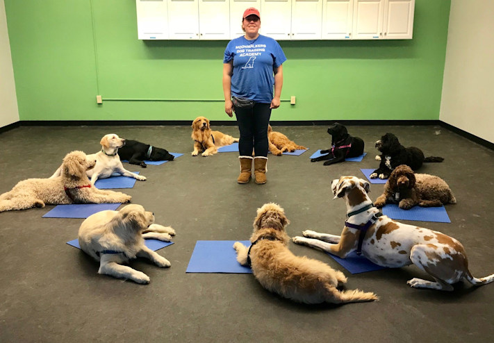 Andrea J. Lamping CPDT-KA- Certified Dog Trainer and Owner